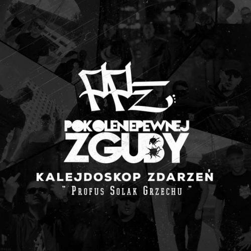 Płyta - PPZ - Kalejdoskop Zdarzeń - BANITA WEAR